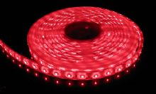 3528 SMD RED LED Strip Light 5 m Long (60 LED/M)